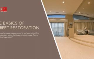 The Basics of Carpet Restoration.. Blog 2
