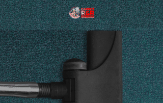 What's more on carpet maintenance